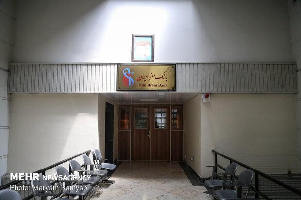 مرکز مغز دانشگاه علوم پزشکی ایران ایجاد می گردد