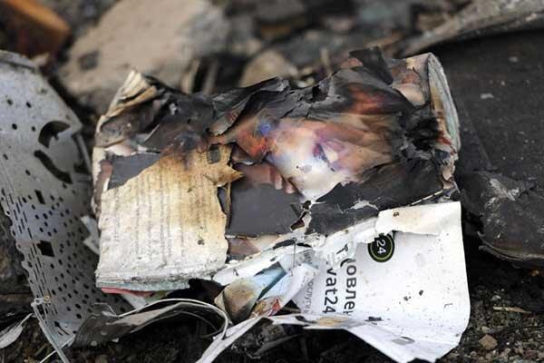واکنش سوئد و آلمان به سقوط هواپیما ، تهران پیامدهای درست در ارزیابی این فاجعه هراس انگیز را ترسیم کند